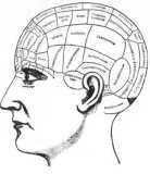 Phrenological